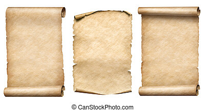 conjunto, viejo, rollosde papel, realistc, ilustración,...