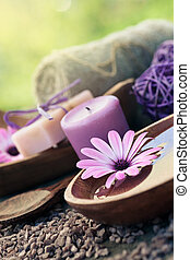 conjunto, violeta, dayspa, naturaleza