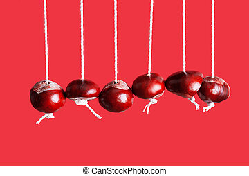 Conkers hanging from string in a row - Conkers on strings...