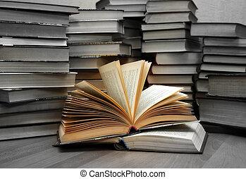 connaissance, -, lumière, ignorance, -, obscurité