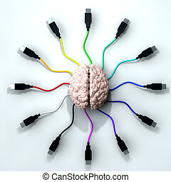 Connected Mind - A human brain with multi-colored usb cable...