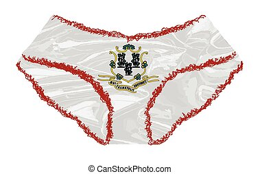 Connecticut State Flag Icons Panties