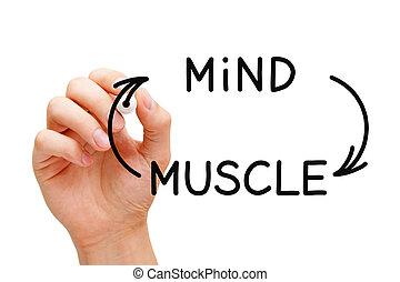 connexion, concept, esprit, muscle