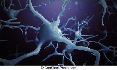 connexions, mondiale, cellules, neurone, boucle