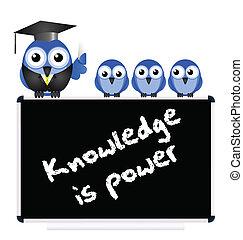 conocimiento, mensaje
