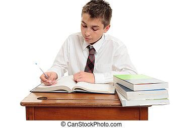 Conscientious school boy student