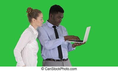 conseiller, ordinateur portable, business, femme affaires, projection, chroma, écran, conversation, américain, vert, quelque chose, blanc, afro, écran, key.