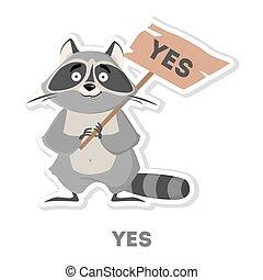 consentir, raccoon., isolé