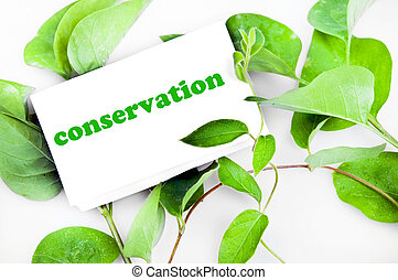 conservação, mensagem, ligado, folhas