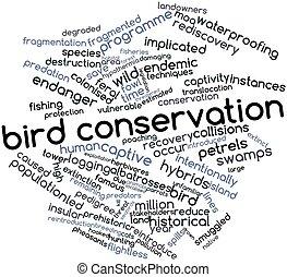 conservación, pájaro