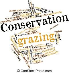conservación, pasto