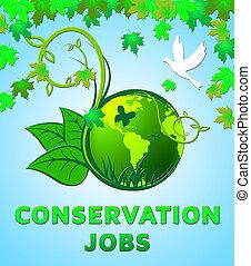 conservación, trabajos, diseño, exposiciones, preservación, 3d, ilustración