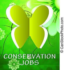 conservación, trabajos, mariposa, exposiciones, preservación, 3d, ilustración