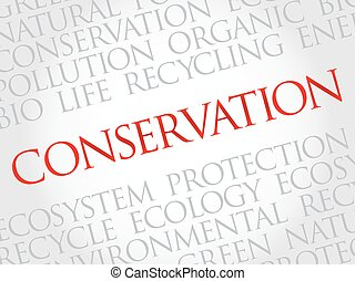 Conservation word cloud