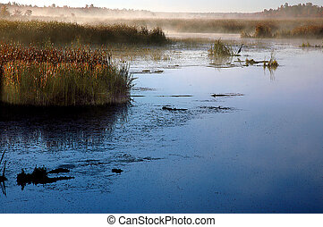 Constance Creek - Small river in Ontario, Canada