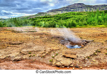 Constantly boiling Litli Geysir in Iceland