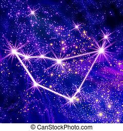Constellation Capricorn in the sky