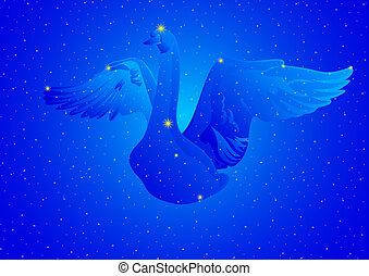 Constellation Cygnus - Constellations of the night sky. ...