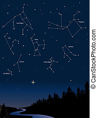constellations 1 - various constellations in a starry night ...