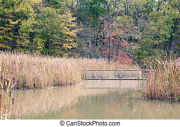 Constitution Marsh is a 270 acre wildlife sanctuary on the...