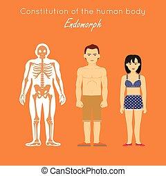 Constitution of Human Body. Endomorph. Endomorphic