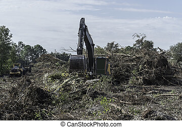 Construction machinery clearing brush and trees on a property prior to construction .