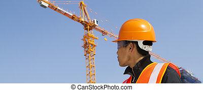 constructor, construcción, inspector, debajo
