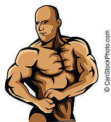 construtor corpo