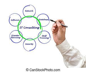 consultant, il