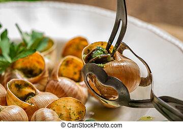 consumir, salsa, ajo, primer plano, frito, caracoles