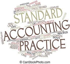 contabilidad, práctica, estándar