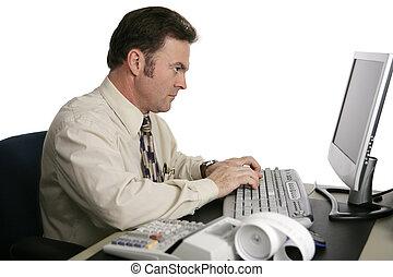 contabilidad, serie, -, en línea