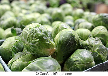 Containers of brussels sprouts