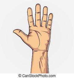 contar, mostrando, cinco, mão
