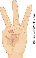contar, três, mão