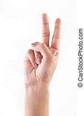 conteggio, 2), (1, mani
