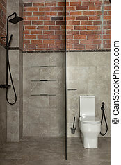 Contemporary bathroom with shower and toilet