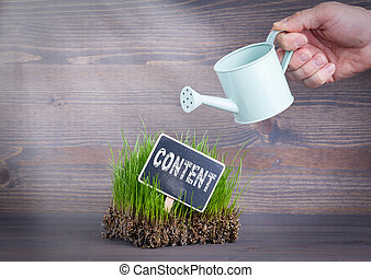 Content concept. Fresh and green grass on wood background