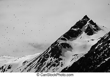 Context of Eternity - Large flock of birds near a mountain...