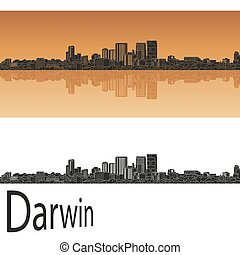 contorno, darwin