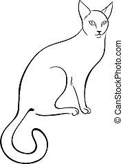 contorno, gato