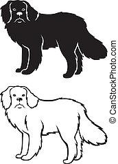 Contour and silhouette of Newfoundland dog