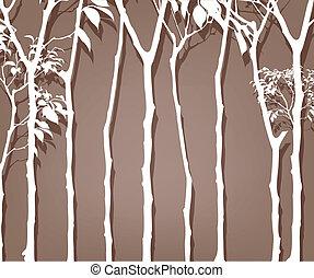contour, arbres