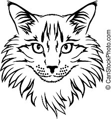 Vector illustrations of contour furry cat portrait