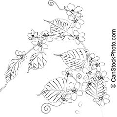 Contour drawing of blooming twig of cherry tree
