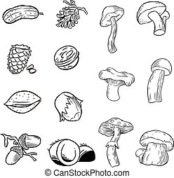 Contour nuts and mushrooms - The illustration shows a set of...