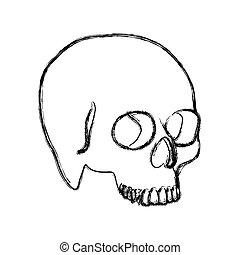 contour skeleton of the human skull icon