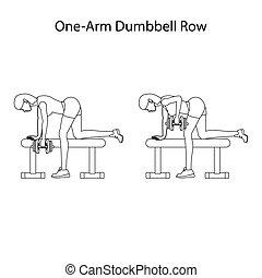 contour, une, dunbbell, bras, exercice, rang