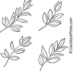 contours, feuilles