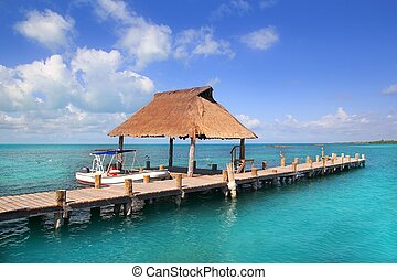 Contoy island Mexico wood pier nature reserve - Contoy...